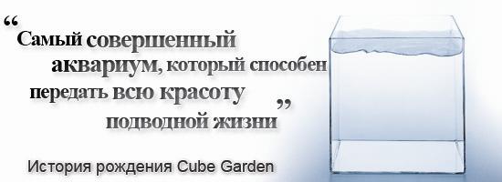 cube_garden