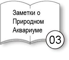 aj_notes_tanks